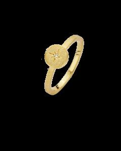 North Star Forgyldt Sølv Ring fra Spirit Icons med Brillant 0,01 Carat